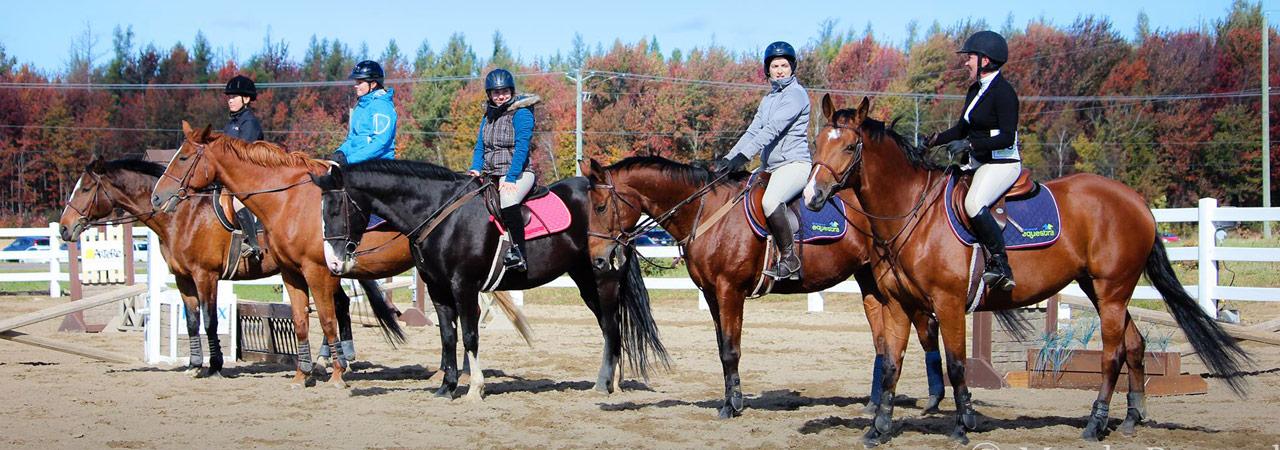 5 cavaliers assistant à un cours d'équitation classique